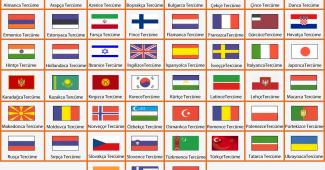 hangi dil çiftleri arasında daha sık tercüme yapılır, tercüme yapılan dil çiftleri, türkçe-ingilizce çeviri